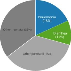 diarrhea and pnuemonia chart